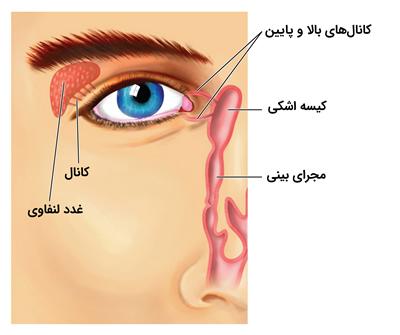 duct diagram (1)